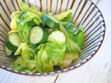 【簡単節約レシピ】あと1品に!春キャベツときゅうりの炒めナムルの常備菜【1食33円】